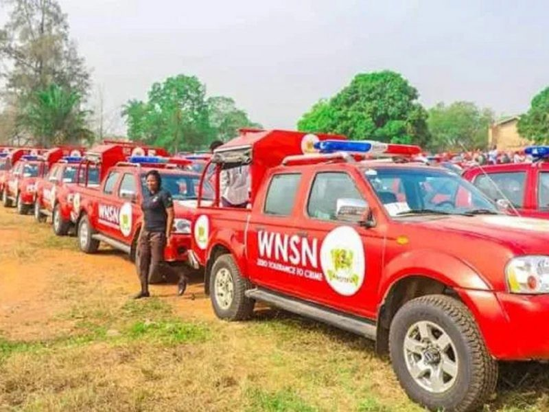 'Corps at work' Amotekun officials seize 65 cows, arrest herder in Ondo