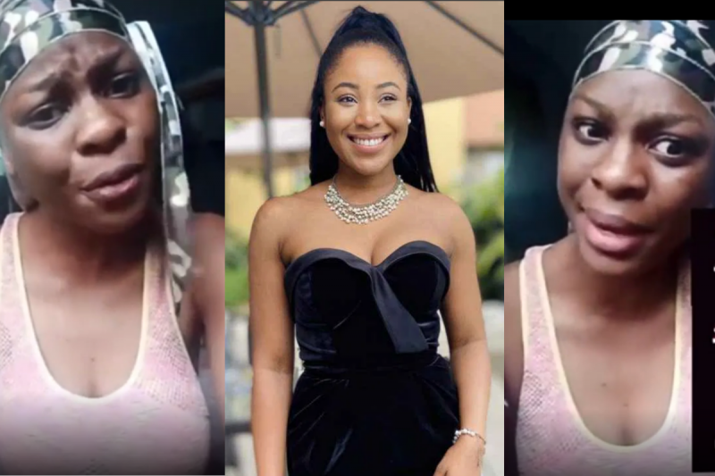 'What Is Erica? An animal or new pandemic' Lady fires Nigerians for focusing their attention on Erica (VIDEO)