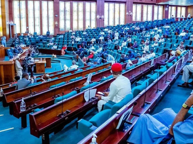 'Reduce it!' Buhari should cut cost of governance before National Assembly, Rep demands