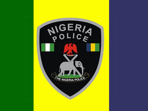 'Justice?' 10 policemen dismissed for murder, corruption, others in Lagos state
