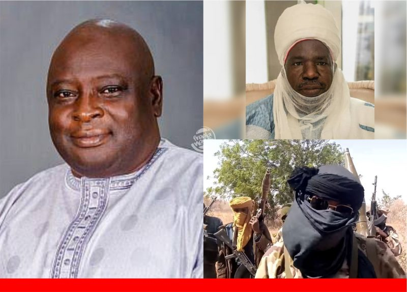 'They've lost the right to life' Babajide Otitoloju lectures FG on how to handle terrorists